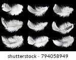 collection of white feathers... | Shutterstock . vector #794058949