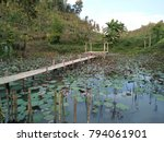 the nature place   Shutterstock . vector #794061901