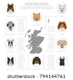 dogs by country of origin.... | Shutterstock .eps vector #794144761