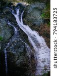 lynn canyon park. canada | Shutterstock . vector #794183725