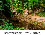 english park in tata  hungary | Shutterstock . vector #794220895