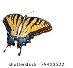 Eastern Tiger Swallowtial...