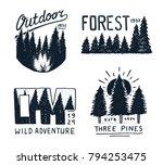coniferous forest  mountains...   Shutterstock .eps vector #794253475