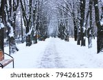 winter beautiful park with many ... | Shutterstock . vector #794261575