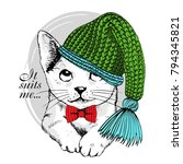 vector white cat with knitted... | Shutterstock .eps vector #794345821