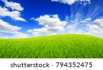 green field grass with a blue... | Shutterstock . vector #794352475