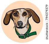 cartoon dog head illustration | Shutterstock .eps vector #794379379