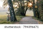 mtb trail track  mountain bike... | Shutterstock . vector #794396671