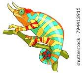 the chameleon male exotic... | Shutterstock .eps vector #794413915