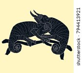 the chameleon couple exotic... | Shutterstock .eps vector #794413921