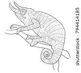 coloring the chameleon male... | Shutterstock .eps vector #794414185