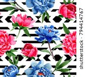 wildflower red and blue peonies ...   Shutterstock . vector #794414767