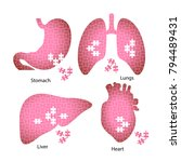 icons of the internal organs of ... | Shutterstock . vector #794489431