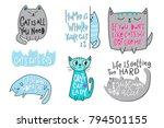 happy crazy love cat lady... | Shutterstock .eps vector #794501155