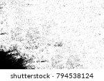 grunge black and white | Shutterstock . vector #794538124