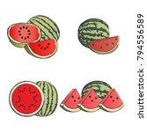 watermelon fruit vector set    Shutterstock .eps vector #794556589
