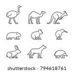 vector set of linear australian ... | Shutterstock .eps vector #794618761