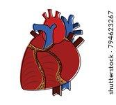 human heart organ | Shutterstock .eps vector #794623267