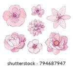Ink  Pencil  Flower Sketch...