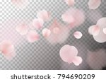 petals of rose isolated on... | Shutterstock .eps vector #794690209