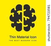 brain bright yellow material...