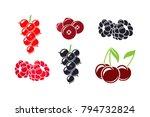 fresh berries. isolated... | Shutterstock .eps vector #794732824