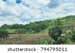 beautiful vibrant background... | Shutterstock . vector #794795011