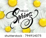 calligraphic inscription hello... | Shutterstock .eps vector #794914075