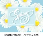 calligraphic inscription hello... | Shutterstock .eps vector #794917525