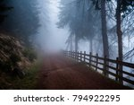 mysterious path. mysterious... | Shutterstock . vector #794922295