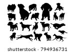 set of cute dog and puppy... | Shutterstock .eps vector #794936731