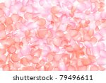 Stock photo two color of the rose petals all over background 79496611