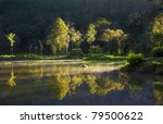 Reflection of tropical trees lit by sunrise - stock photo