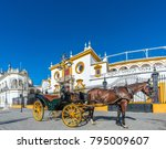 horse carriage  one of the most ... | Shutterstock . vector #795009607