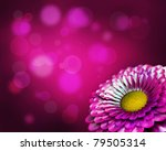 summer flower design. with copy ... | Shutterstock . vector #79505314