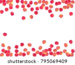 rose petals border invitation... | Shutterstock .eps vector #795069409