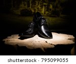 groom accessories  watch  shoes ...   Shutterstock . vector #795099055