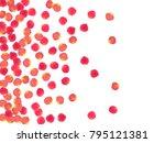 rose petals falling windy... | Shutterstock .eps vector #795121381