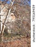 camp verde  arizona.  u.s.a. ... | Shutterstock . vector #795169459