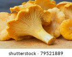 Fresh Golden Chanterelles...