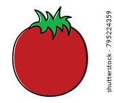 tomato vegetable nutrition food ...   Shutterstock .eps vector #795224359