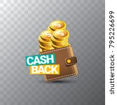 vector cash back icon with... | Shutterstock .eps vector #795226699