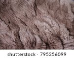 Texture Of Light Brown Fur.