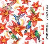 birds of hummingbirds  red lily ... | Shutterstock . vector #795261169