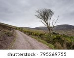mountain road with wind blown... | Shutterstock . vector #795269755