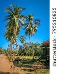 dusty gravel road through the... | Shutterstock . vector #795310825