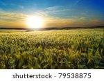 an image of a beautiful sunset... | Shutterstock . vector #79538875