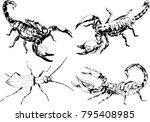 vector drawings sketches... | Shutterstock .eps vector #795408985