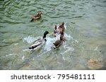 in yilan city  taiwan  colorful ... | Shutterstock . vector #795481111