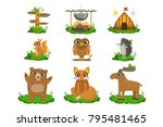forest camping cute set | Shutterstock .eps vector #795481465